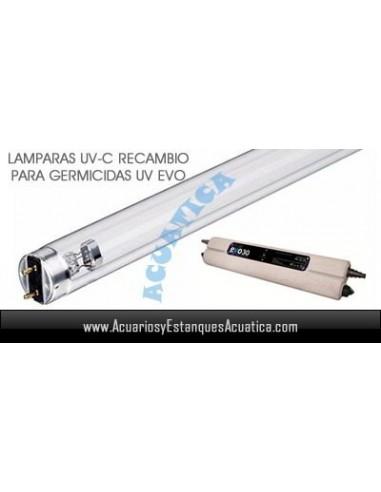 LAMPARA RECAMBIO 15W UV-C TL ULTRAVIOLETA