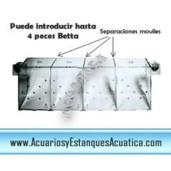 BETTERA SEPARADOR PARA 4 PECES BETTA